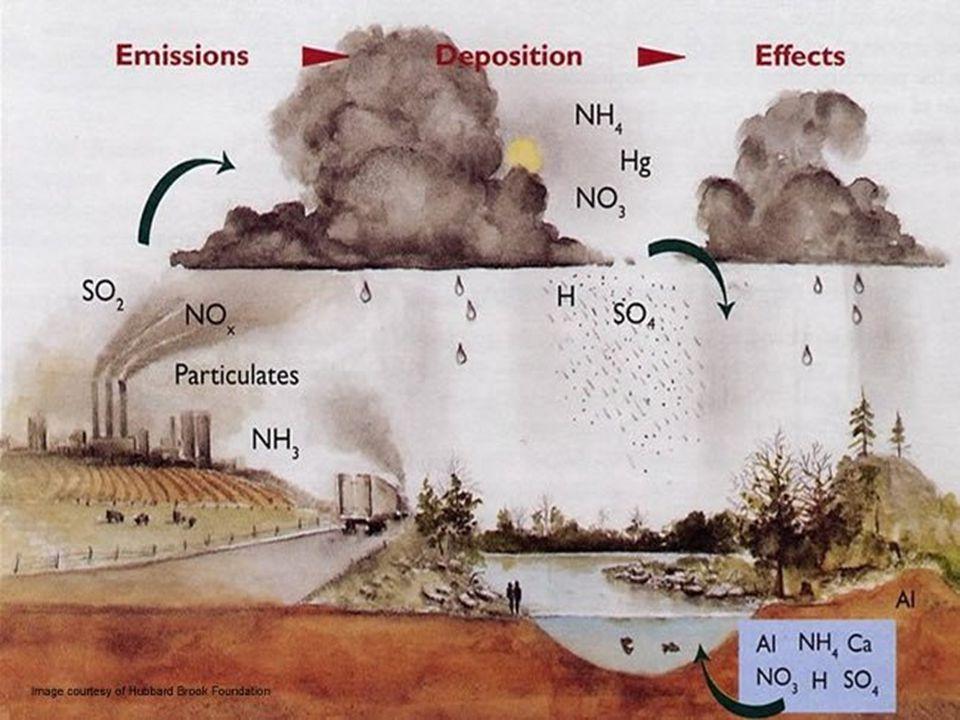 เกิดจากการผลิตกระแสไฟฟ้า และโรงงาน อุตสาหกรรมที่ปล่อย ก๊าซซัลเฟอร์ได ออกไซด์ (sulfur dioxide: SO2) และ ไนโตรเจนออกไซด์ (nitrogen oxide: NO) เกิดจากการเผาผลาญเชื้อเพลิง ฟอสซิล ก๊าซทั้งสองชนิดนี้จะทำปฏิกิริยา กับน้ำ (water: H2O) และสารเคมีอื่น ๆ เช่น กรดซัลฟิวริก (sulfuric acid: H2SO4), กรดไนตริก (nitric acid: HNO3) เป็นต้น