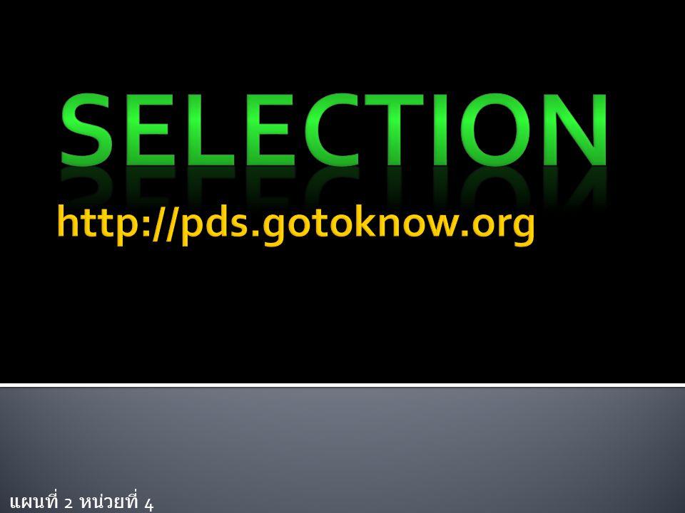  สร้าง Selection ไว้เพื่ออะไร