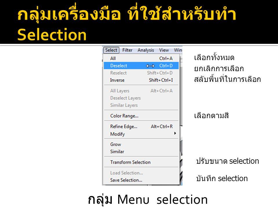 กลุ่ม Menu selection เลือกทั้งหมด ยกเลิกการเลือก สลับพื้นที่ในการเลือก เลือกตามสี ปรับขนาด selection บันทึก selection