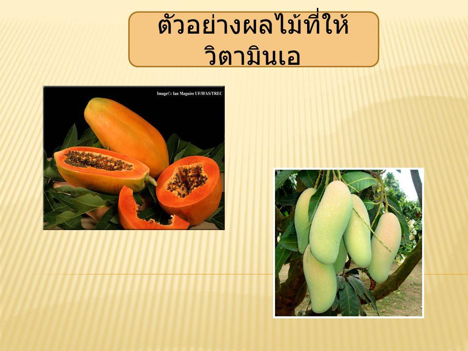 ตัวอย่างผลไม้ที่ให้ วิตามินเอ