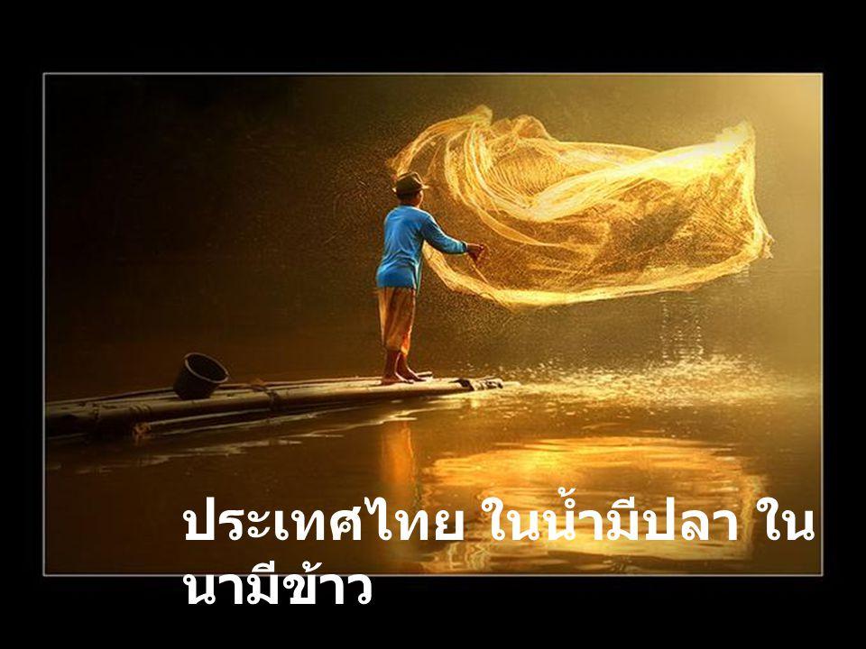 ประเทศไทยในน้ำมีปลา ในนามีข้าว