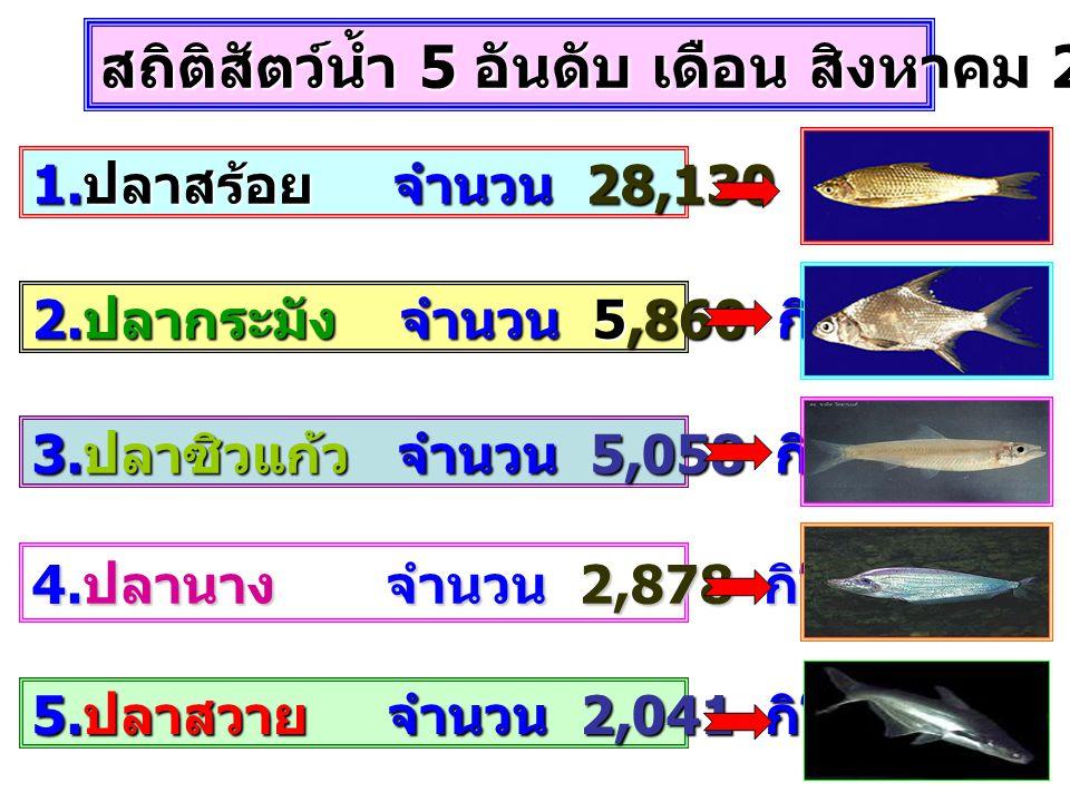 1. ปลาสร้อย จำนวน 28,130 กิโลกรัม 2. ปลากระมัง จำนวน 5,860 กิโลกรัม 3. ปลาซิวแก้ว จำนวน 5,058 กิโลกรัม 4. ปลานาง จำนวน 2,878 กิโลกรัม 5. ปลาสวาย จำนวน