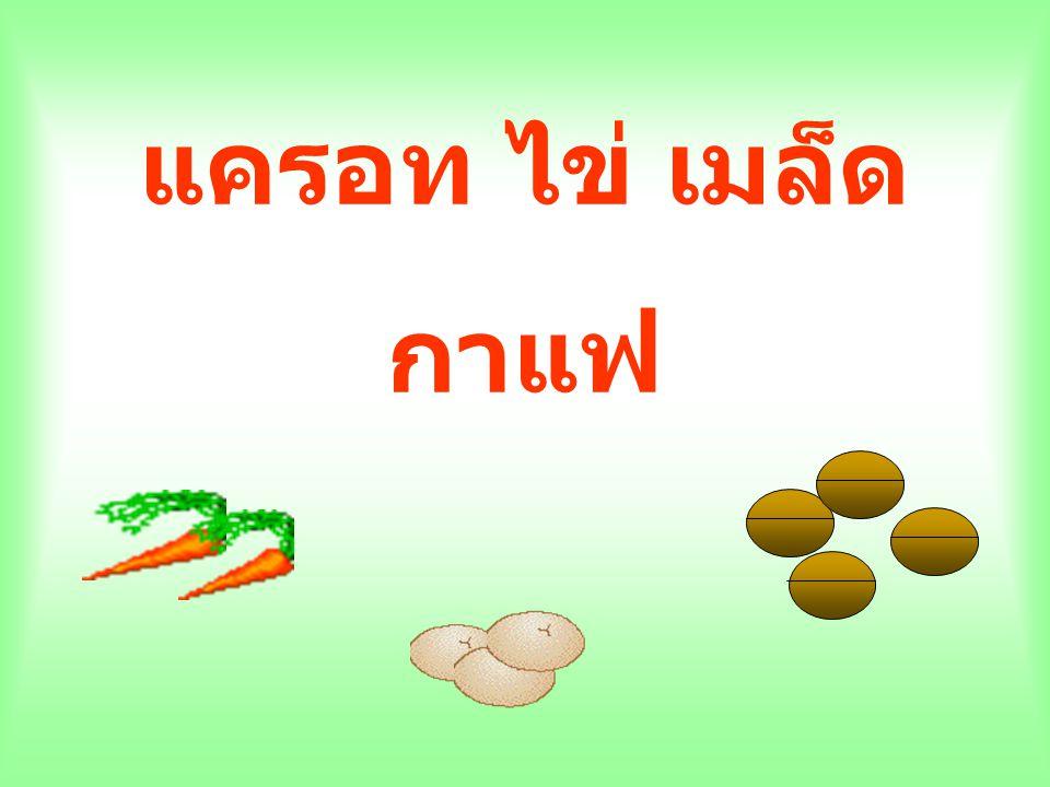 แครอท ไข่ เมล็ด กาแฟ