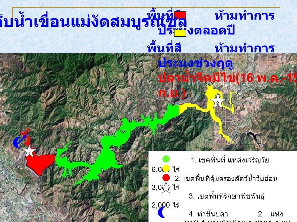 พื้นที่สี ห้ามทำการ ประมงตลอดปี พื้นที่สี ห้ามทำการ ประมงช่วงฤดู. ปลาน้ำจืดมีไข่ (16 พ. ค.-15 ก. ย.) อ่างเก็บน้ำเขื่อนแม่งัดสมบูรณ์ชล 1. เขตพื้นที่ แห