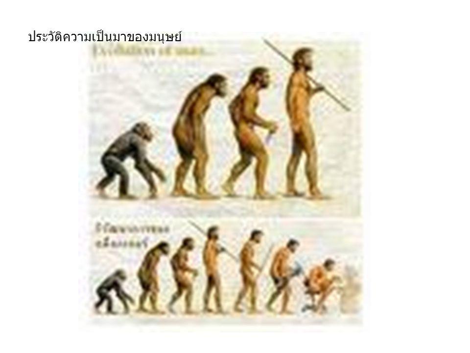 โบราณคดีคือการศึกษาที่เน้นเรื่องราว ของมนุษย์ในอดีต โดยศึกษาหลักฐานโบราณ ทั้ง โบราณสถานและโบราณวัตถุเพื่อให้เกิด ความเข้าใจในเรื่องราวของชุมชน ประชากรและวัฒนธรรมที่เป็นเจ้าของ โบราณวัตถุและโบราณสถานเหล่านั้น