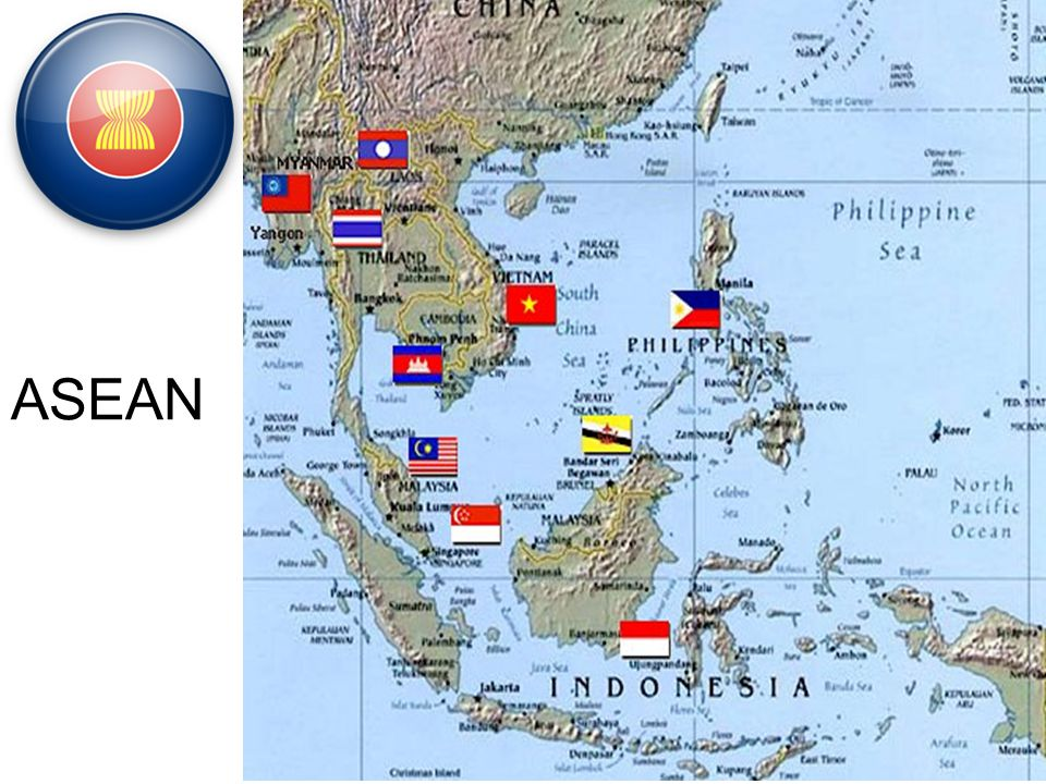 Non-Aligned Movement 116 Countries