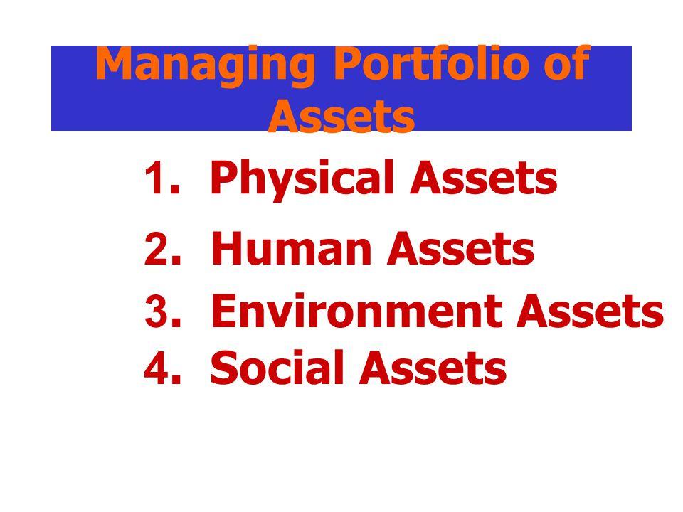 Managing Portfolio of Assets 1.Physical Assets 2.