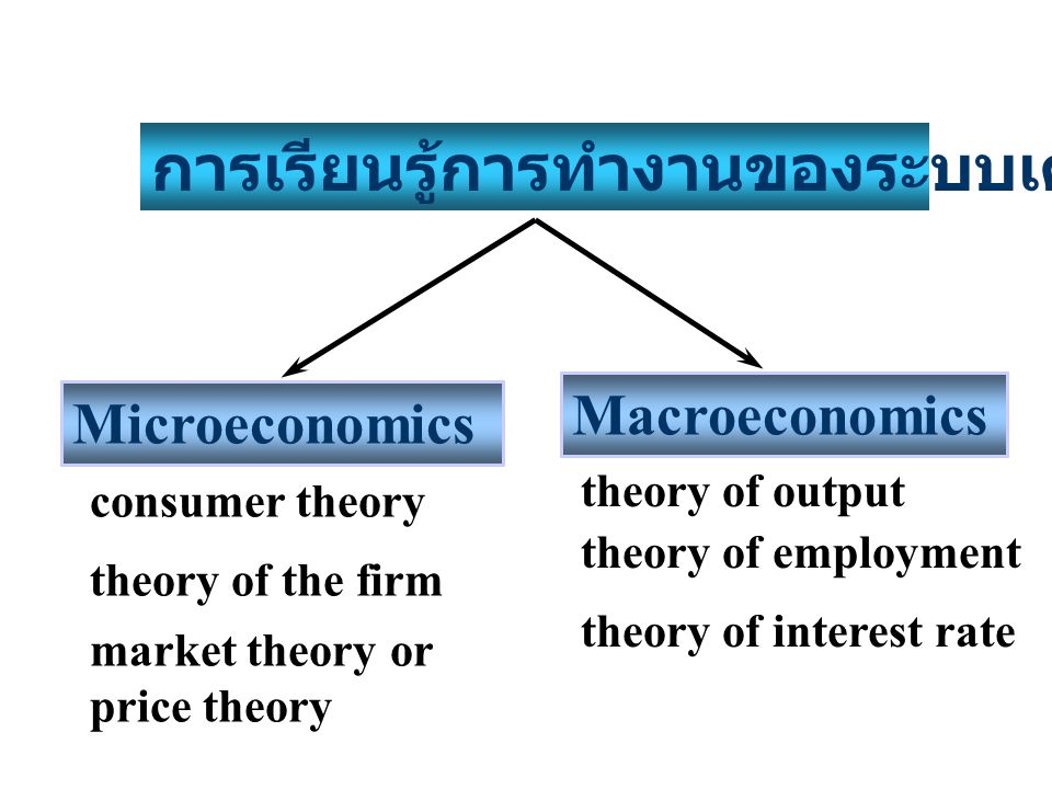 1.เพื่อเข้าใจการทำงานของระบบเศรษฐกิจ 2. อธิบายปรากฎการณ์หรือปัญหาทางเศรษฐกิจที่เกิดขึ้น 3.