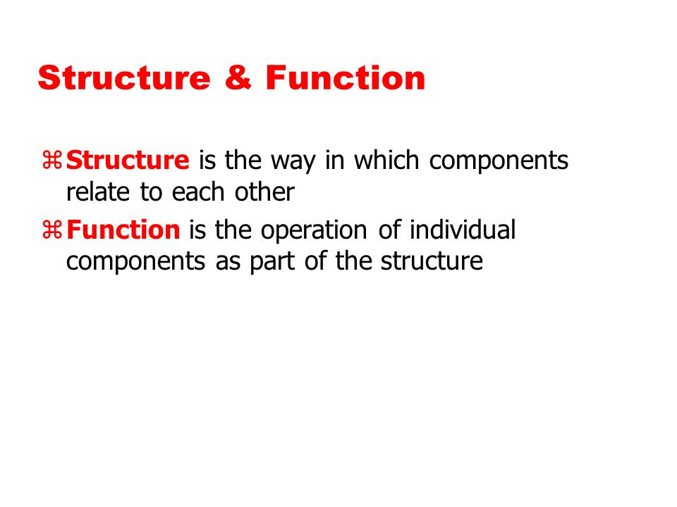 Structure & Function zStructure is the way in which components relate to each other zFunction is the operation of individual components as part of the structure