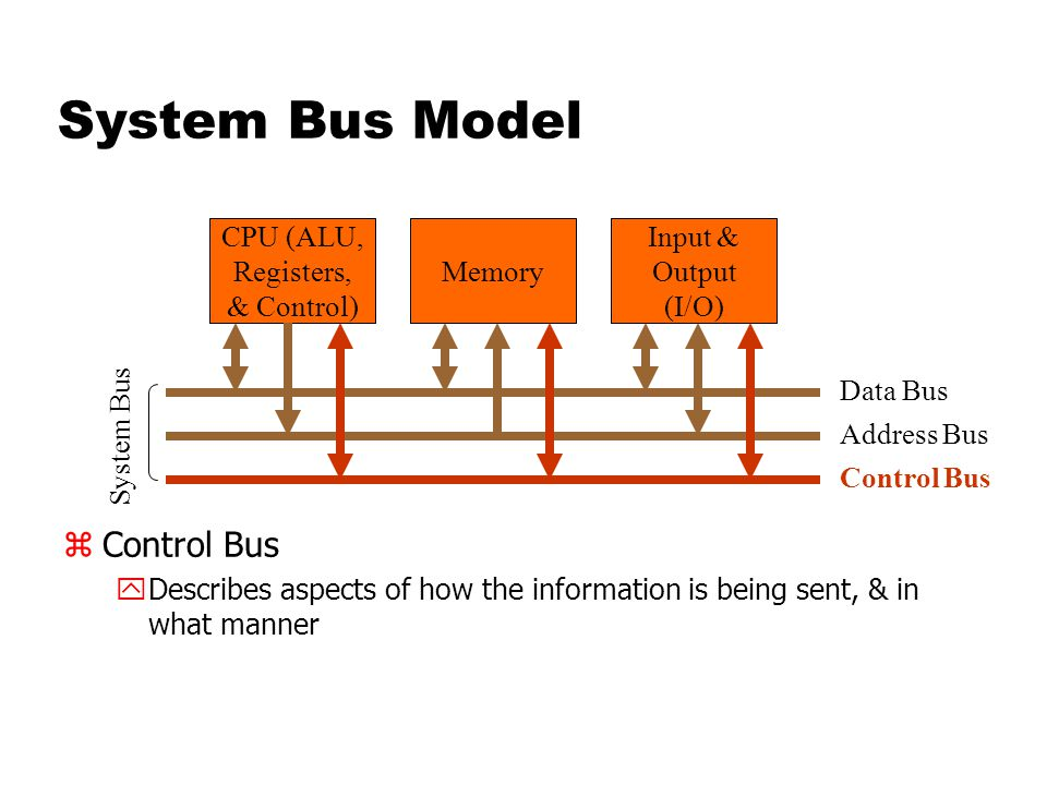 System Bus Model zControl Bus yDescribes aspects of how the information is being sent, & in what manner CPU (ALU, Registers, & Control) Memory Input & Output (I/O) Data Bus Address Bus Control Bus System Bus
