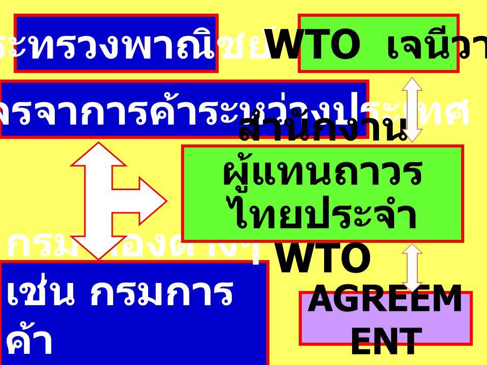 กระทรวงพาณิชย์ กรมเจรจาการค้าระหว่างประเทศ กรม กองต่างๆ เช่น กรมการ ค้า ต่างประเทศ WTO เจนีวา สำนักงาน ผู้แทนถาวร ไทยประจำ WTO AGREEM ENT