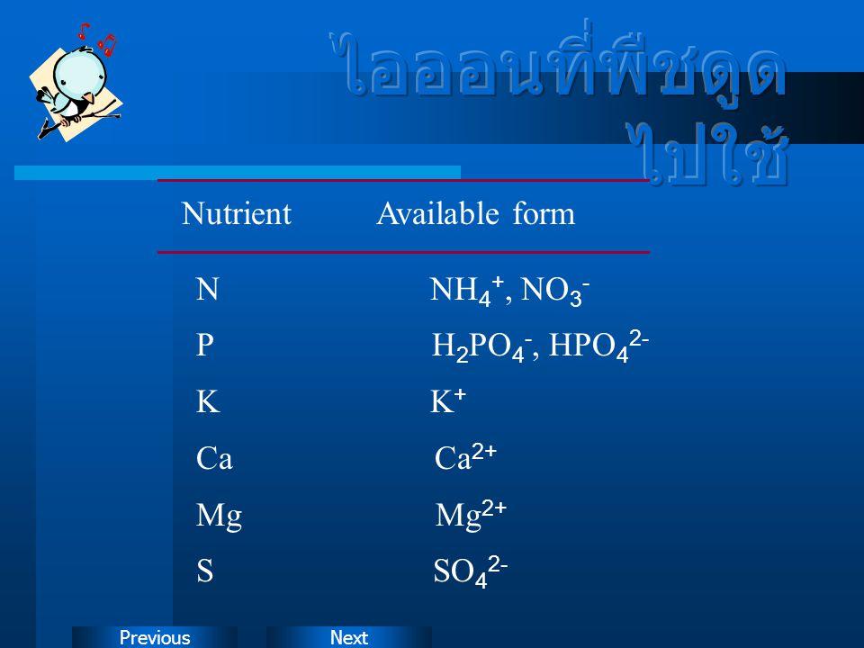 NextPrevious Nutrient Available form N NH 4 +, NO 3 - P H 2 PO 4 -, HPO 4 2- K K + Ca Ca 2+ Mg Mg 2+ S SO 4 2-