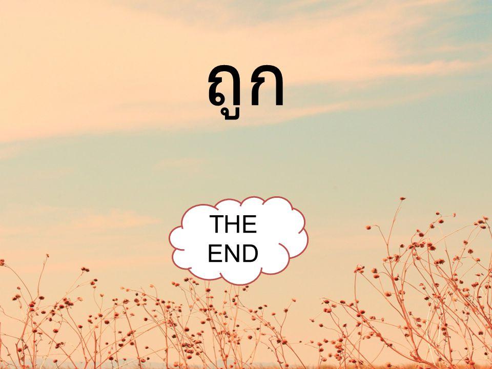 ถูก THE END