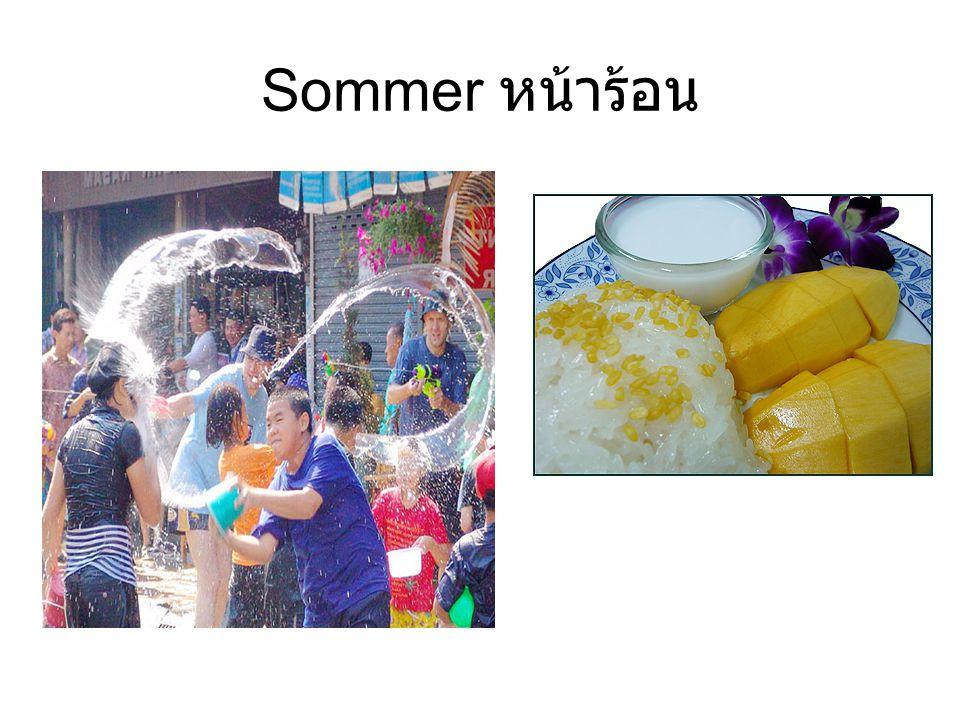 Sommer หน้าร้อน