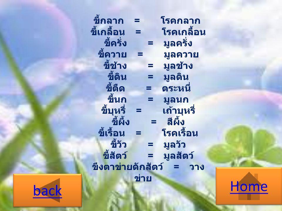 พยัญชนะวรรค พยัญชนะในภาษาไทย แบ่งออกเป็นวรรค ตามฐานกรณ์ที่เกิดเสียง จัดลำดับตามจาก แหล่งกำเนิดเสียงด้านในสุดออกมาตามลำดับ ประโยชน์จากการแบ่งวรรคทำให้เกิด ประโยชน์ทางหลักภาษาในเรื่อง อักษรสังโยค ไตรยางค์ อักษรคู่ อักษรเดี่ยว ตารางการจัดพยัญชนะ next Home