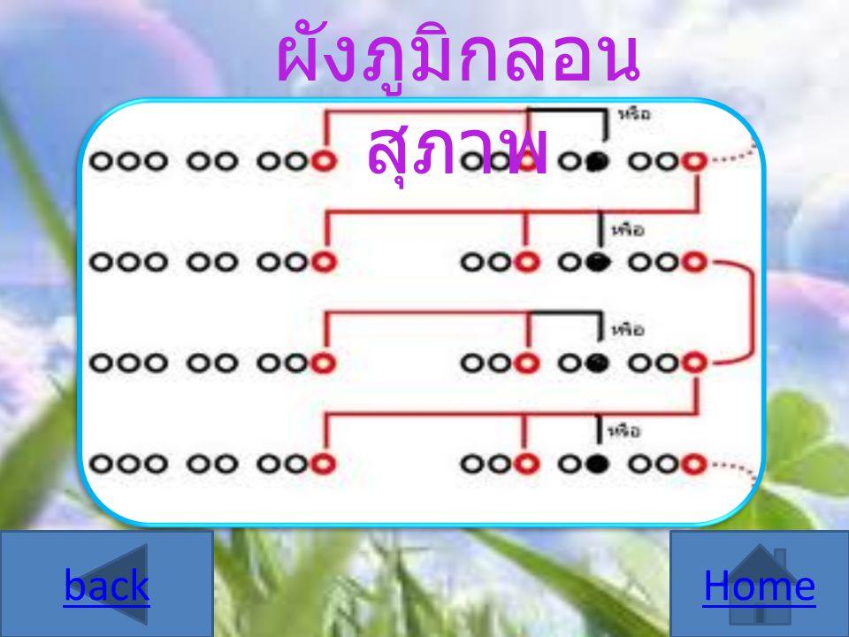 คำนามในภาษาไทยแบ่งออกเป็น 5 ชนิด คือ สามานยนาม ( คำนามไม่ชี้เฉพาะ ) หรือคำนาม ทั่วไป คือ คำนามสามัญที่ใช้เป็นชื่อทั่วไป หรือ เป็นคำเรียกสิ่งต่างๆ โดยทั่วไป ไม่ชี้ เฉพาะเจาะจง สามานยนามบางคำมีคำย่อยเพื่อ บอกชนิดย่อยๆของสิ่งต่างๆ เรียกว่า สามา นยนามย่อย วิสามานยนาม ( คำนามชี้เฉพาะ ) หรือคำนามชี้ เฉพาะ คือ คำนามที่เป็นชื่อเฉพาะของคน สัตว์ สถานที่ หรือเป็นคำเรียกบุคคล สถานที่เพื่อ เจาะจงว่าเป็นคนไหน สิ่งใด ลักษณนาม ( คำนามแสดงลักษณะ ) คือ คำนาม ที่ทำหน้าที่ประกอบนามอื่น เพื่อบอกรูปร่าง ลักษณะ ขนาดหรือปริมาณของนามนั้นให้ ชัดเจนขึ้น Home next