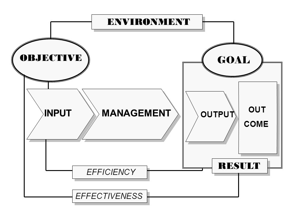 INPUT OUTPUT OUT COME OBJECTIVE EFFECTIVENESS EFFICIENCY RESULT MANAGEMENT ENVIRONMENT GOAL