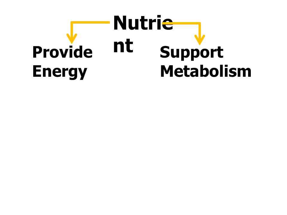ส่วนประกอบทางเคมีใน ร่างกายมนุษย์