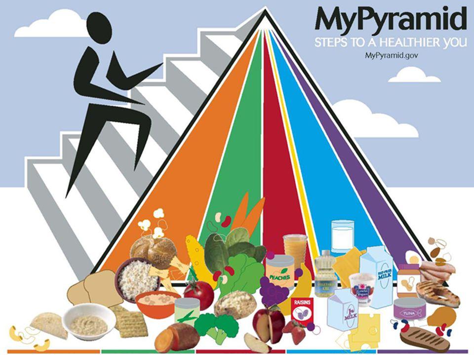 Useful Diagnostic Applications Prescriptive Applications My Pyrami d My Plate ธง โภชนากา ร