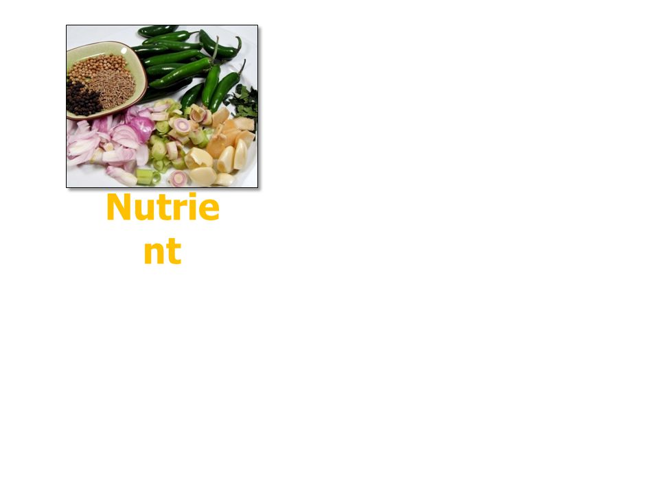 Nutrie nt = 1. Carbohydrates 2. Proteins 3. Fats 4. Dietary Minerals 5. Vitamins 6. Water Provide Energy Support Metaboli sm