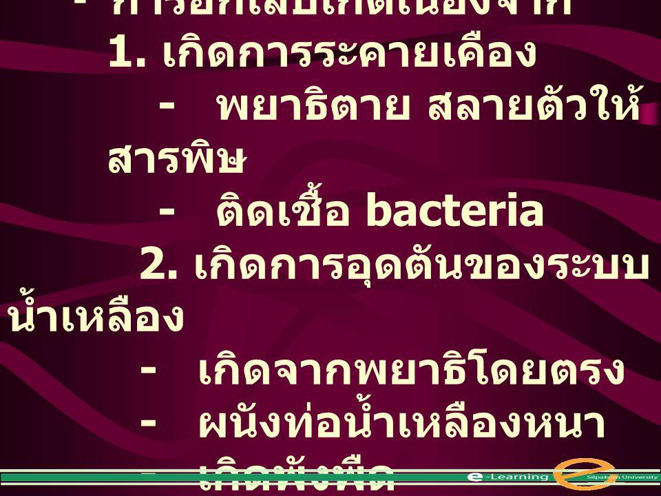 - การอักเสบเกิดเนื่องจาก 1. เกิดการระคายเคือง - พยาธิตาย สลายตัวให้ สารพิษ - ติดเชื้อ bacteria 2. เกิดการอุดตันของระบบ น้ำเหลือง - เกิดจากพยาธิโดยตรง