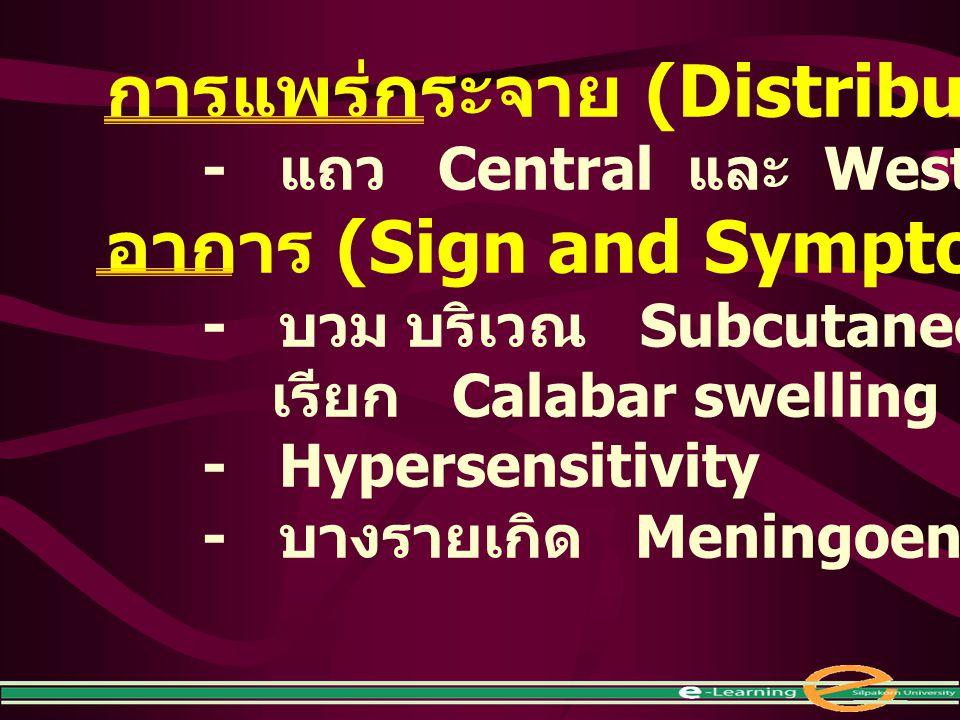 การแพร่กระจาย (Distribution) - แถว Central และ West Africa อาการ (Sign and Symptom) - บวม บริเวณ Subcutaneous เรียก Calabar swelling - Hypersensitivit