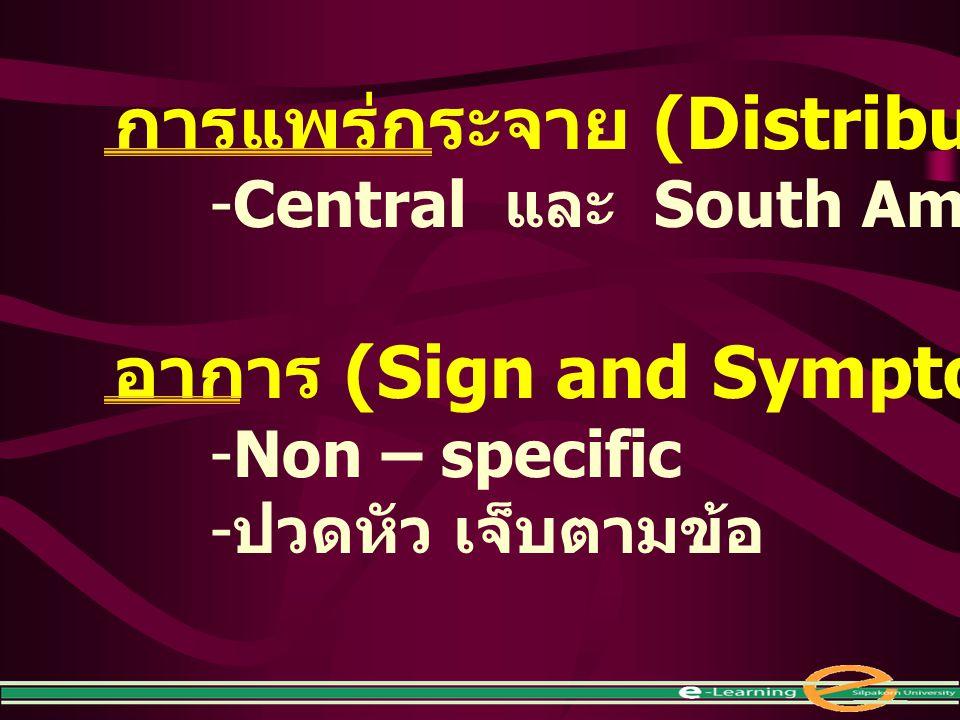 การแพร่กระจาย (Distribution) -Central และ South America อาการ (Sign and Symptom) -Non – specific - ปวดหัว เจ็บตามข้อ