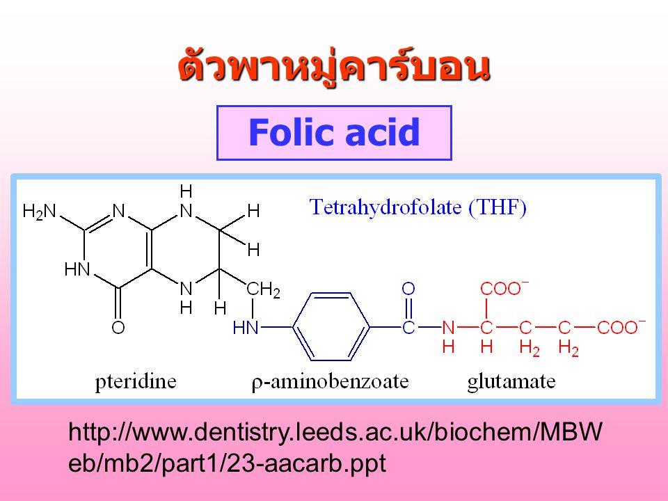 ตัวพาหมู่คาร์บอน Folic acid http://www.dentistry.leeds.ac.uk/biochem/MBW eb/mb2/part1/23-aacarb.ppt