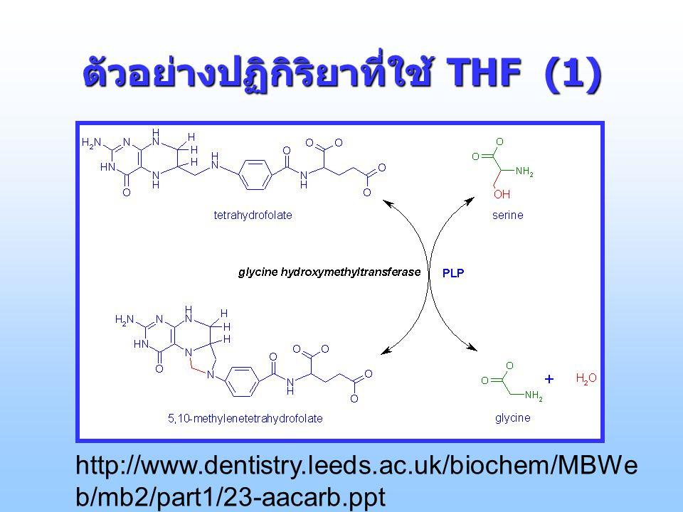 ตัวอย่างปฏิกิริยาที่ใช้ THF (1) http://www.dentistry.leeds.ac.uk/biochem/MBWe b/mb2/part1/23-aacarb.ppt