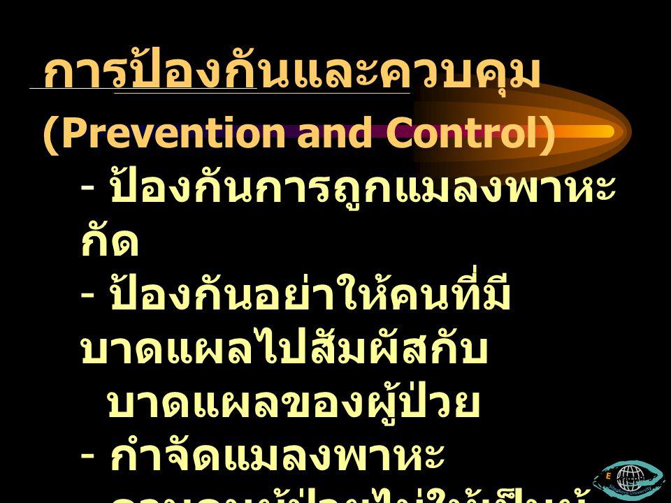 การป้องกันและควบคุม (Prevention and Control) - ป้องกันการถูกแมลงพาหะ กัด - ป้องกันอย่าให้คนที่มี บาดแผลไปสัมผัสกับ บาดแผลของผู้ป่วย - กำจัดแมลงพาหะ -