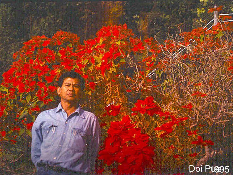 Doi Ang Khang 1976
