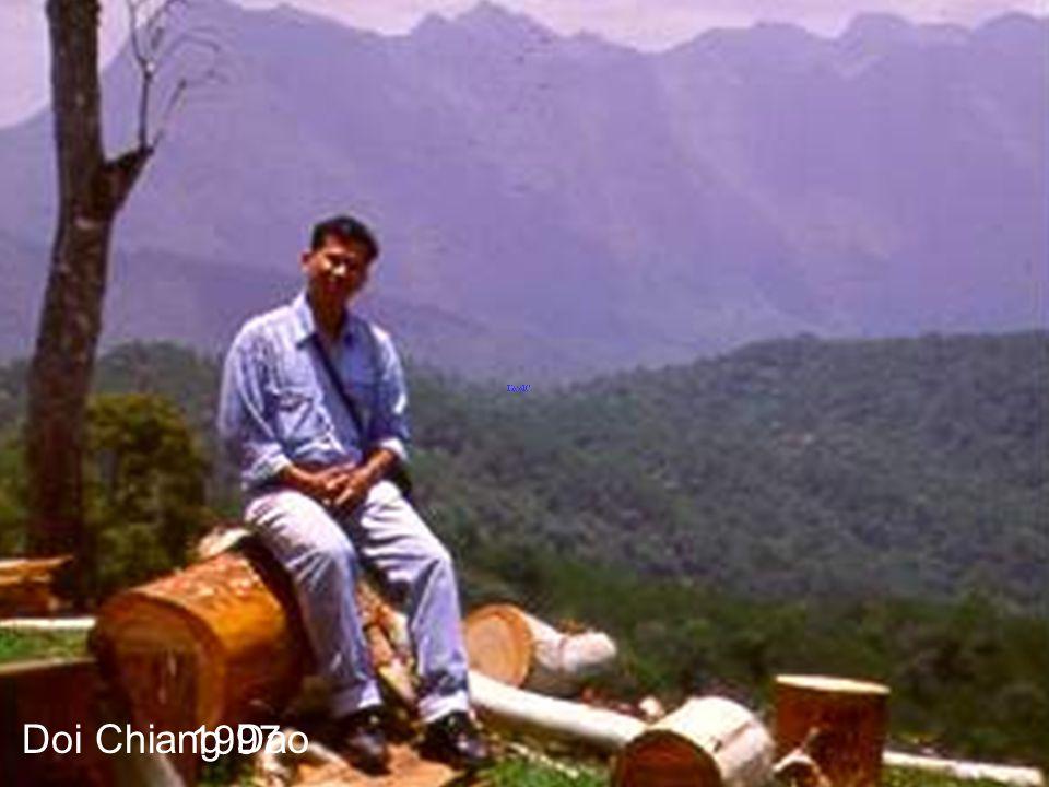 Doi Pue 1995