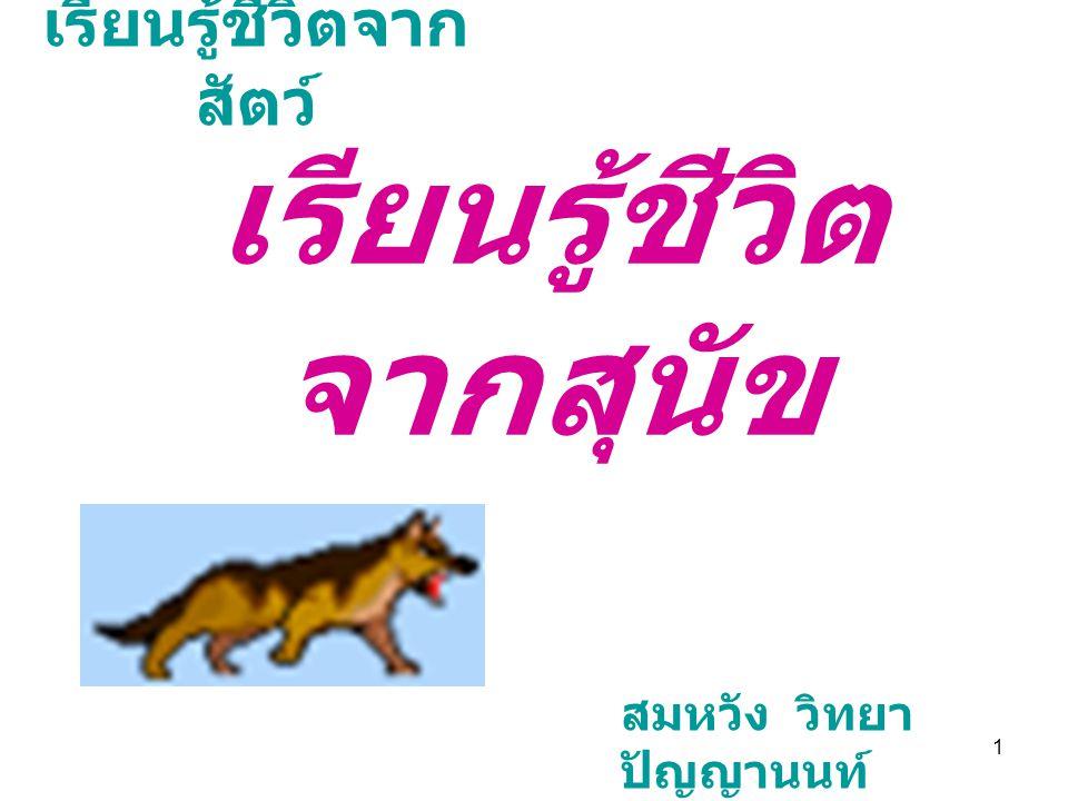 1 เรียนรู้ชีวิตจาก สัตว์ เรียนรู้ชีวิต จากสุนัข สมหวัง วิทยา ปัญญานนท์