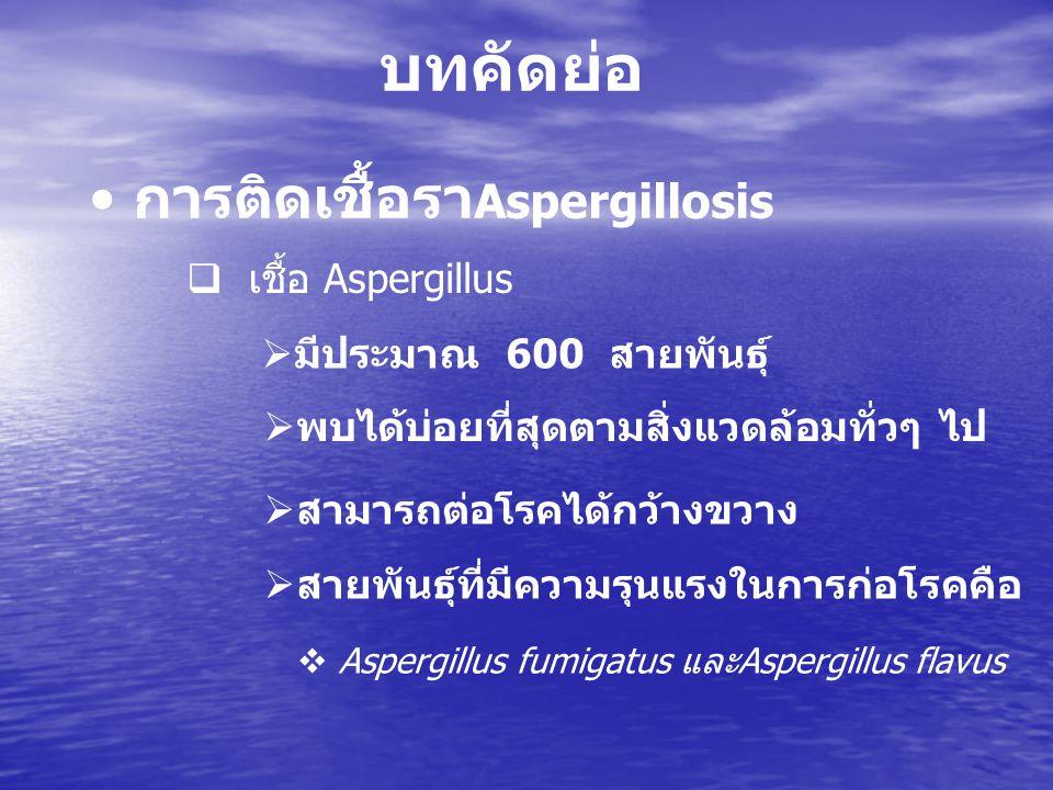  โรค Aspergillusis  ครั้งแรกพบในนก  ต่อมาพบโรคในคน  ส่วนมากจะเป็นในผู้ป่วยที่มีความบกพร่องทางภูมิคุ้มกัน บทคัดย่อ ( ต่อ ) การติดเชื้อรา Aspergillosis  ต่อมาพบบ่อย ๆ ในคนเลี้ยงนก