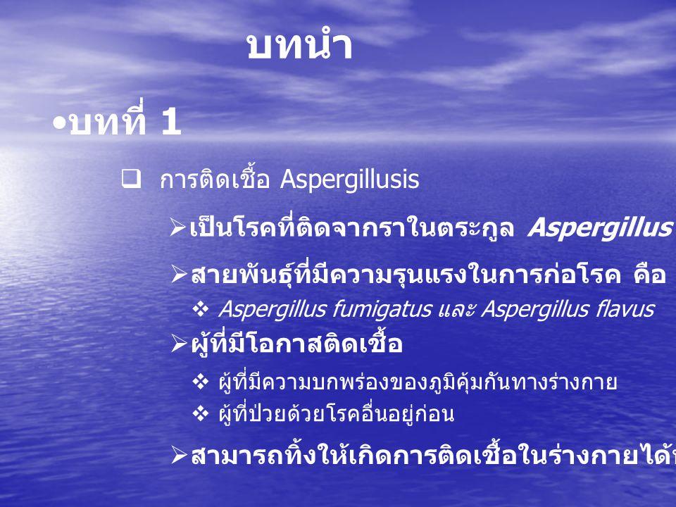 บทที่ 1 ( ต่อ )  สกุล Aspergillusis  จัดเป็นเชื้อราฉวยโอกาสที่พบได้บ่อยที่สุด  คุณสมบัติของเชื้อรานี้  1 จัดเป็นเชื้อราชนิดมีผนังกั้น  2 มีก้านชูงอกตรงออกจากสายตา  3 ปนกระเปาะมีติ่ง ชั้นเดียวหรือสองชั้น  4 ปลายติ่งเป็นที่เกิดของโคนิเดีย