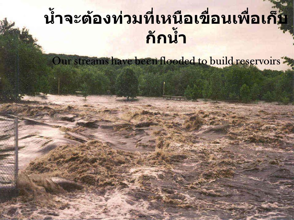 น้ำจะต้องท่วมที่เหนือเขื่อนเพื่อเก็บ กักน้ำ Our streams have been flooded to build reservoirs