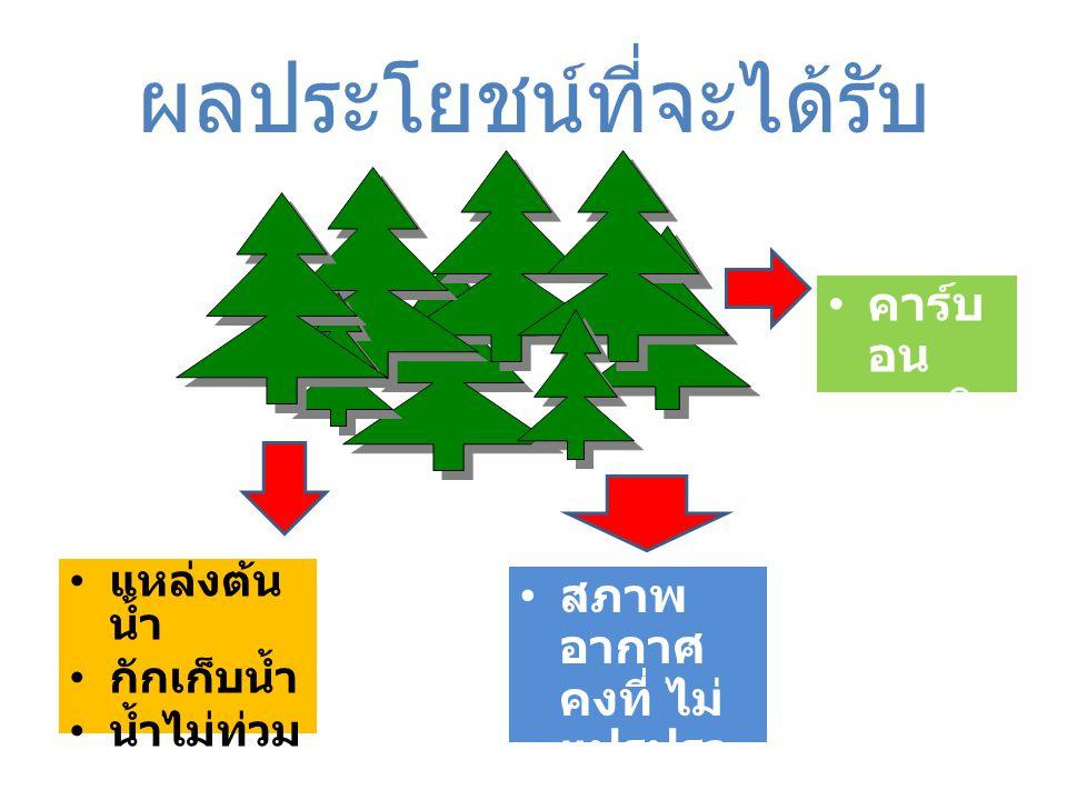 แหล่งต้น น้ำ กักเก็บน้ำ น้ำไม่ท่วม ผลประโยชน์ที่จะได้รับ สภาพ อากาศ คงที่ ไม่ แปรปรว น คาร์บ อน เครดิ ต