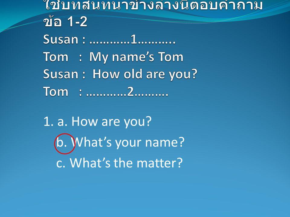 1. a. How are you? b. What's your name? c. What's the matter?