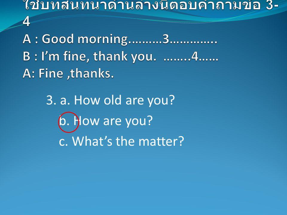 3. a. How old are you? b. How are you? c. What's the matter?