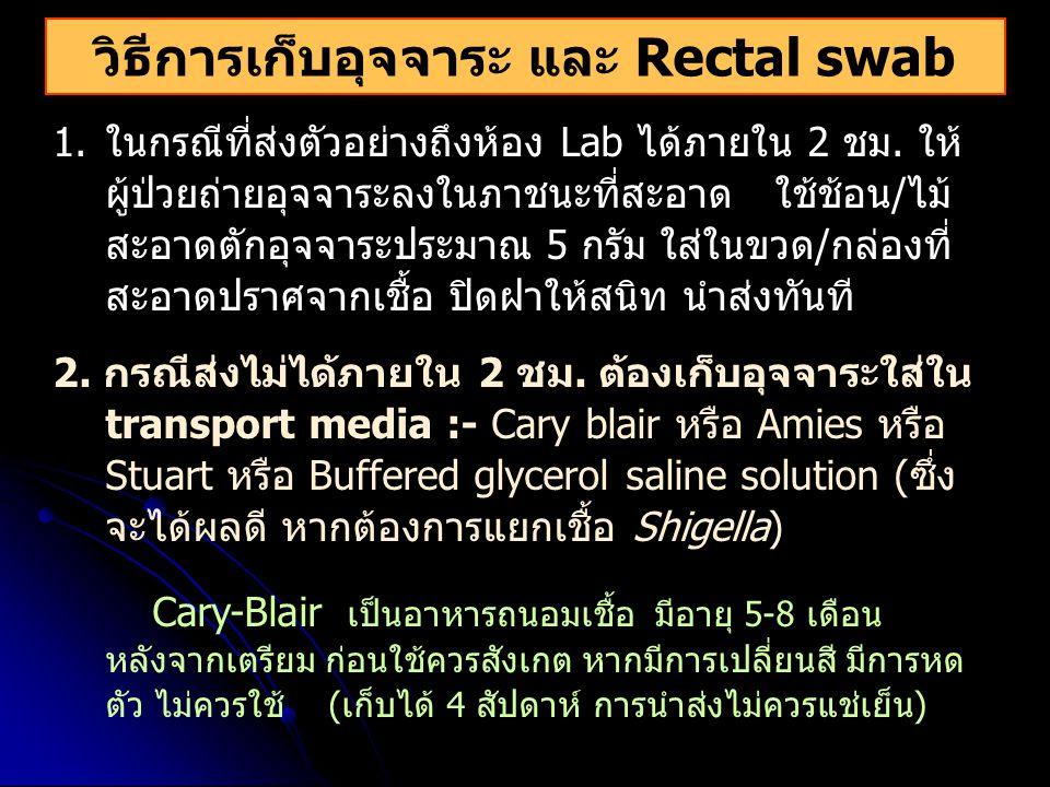 วิธีการเก็บอุจจาระ และ Rectal swab 1.ในกรณีที่ส่งตัวอย่างถึงห้อง Lab ได้ภายใน 2 ชม. ให้ ผู้ป่วยถ่ายอุจจาระลงในภาชนะที่สะอาด ใช้ช้อน/ไม้ สะอาดตักอุจจาร