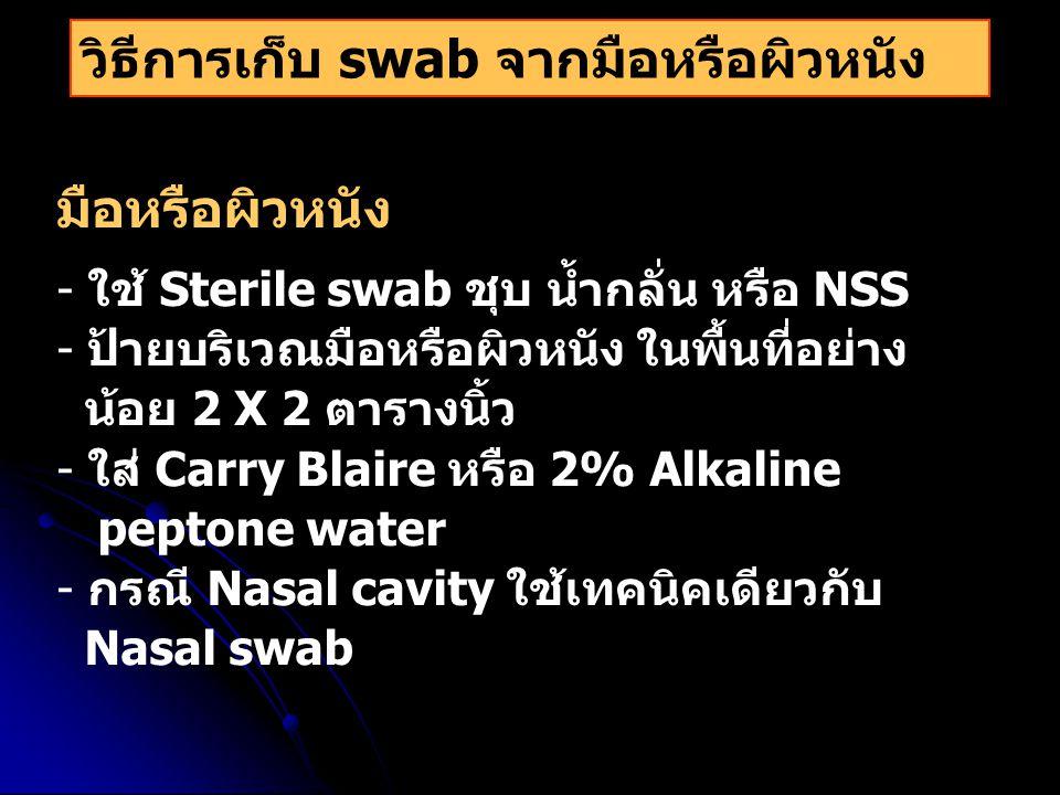 วิธีการเก็บ swab จากมือหรือผิวหนัง มือหรือผิวหนัง - ใช้ Sterile swab ชุบ น้ำกลั่น หรือ NSS - ป้ายบริเวณมือหรือผิวหนัง ในพื้นที่อย่าง น้อย 2 X 2 ตารางน