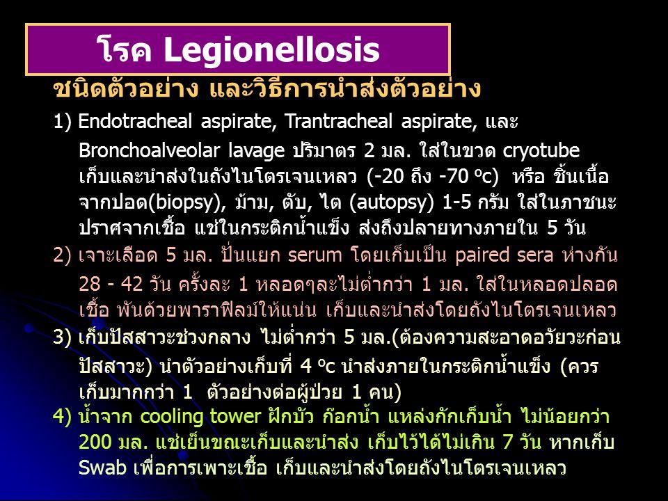 โรค Legionellosis ชนิดตัวอย่าง และวิธีการนำส่งตัวอย่าง 1) Endotracheal aspirate, Trantracheal aspirate, และ Bronchoalveolar lavage ปริมาตร 2 มล. ใส่ใน