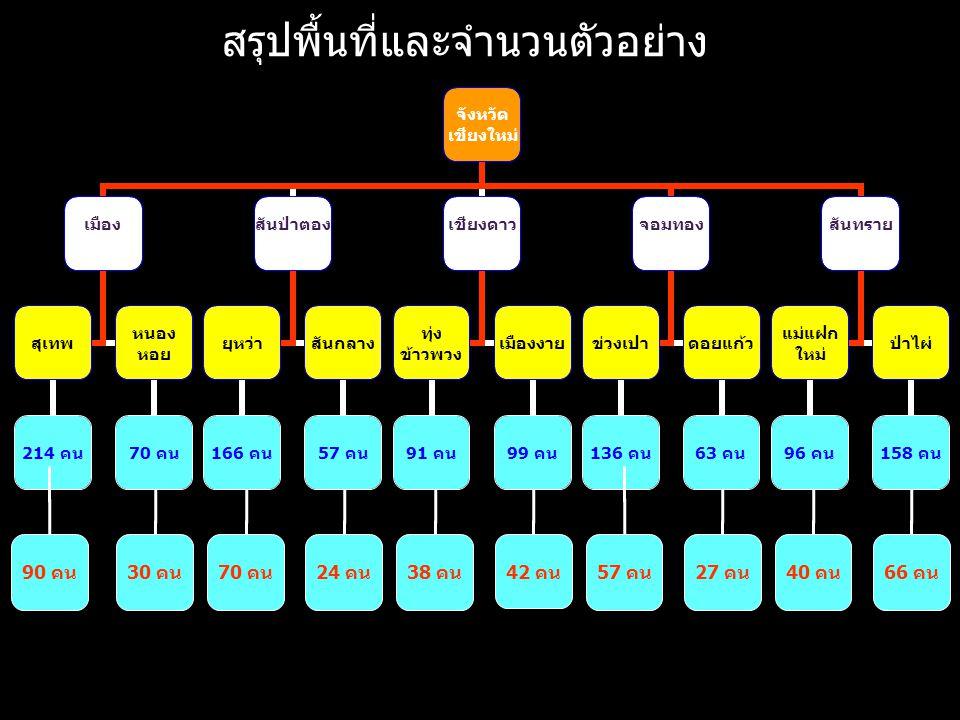 LOGO www.themegallery.com จังหวัด เชียงใหม่ เมือง สุเทพ 214 คน หนอง หอย 70 คน สันป่าตอง ยุหว่า 166 คน สันกลาง 57 คน เชียงดาว ทุ่ง ข้าวพวง 91 คน เมืองง