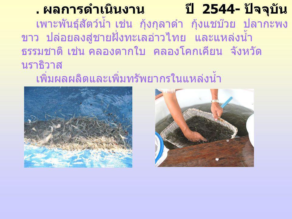 . ผลการดำเนินงาน ปี 2544- ปัจจุบัน เพาะพันธุ์สัตว์น้ำ เช่น กุ้งกุลาดำ กุ้งแชบ๊วย ปลากะพง ขาว ปล่อยลงสู่ชายฝั่งทะเลอ่าวไทย และแหล่งน้ำ ธรรมชาติ เช่น คล