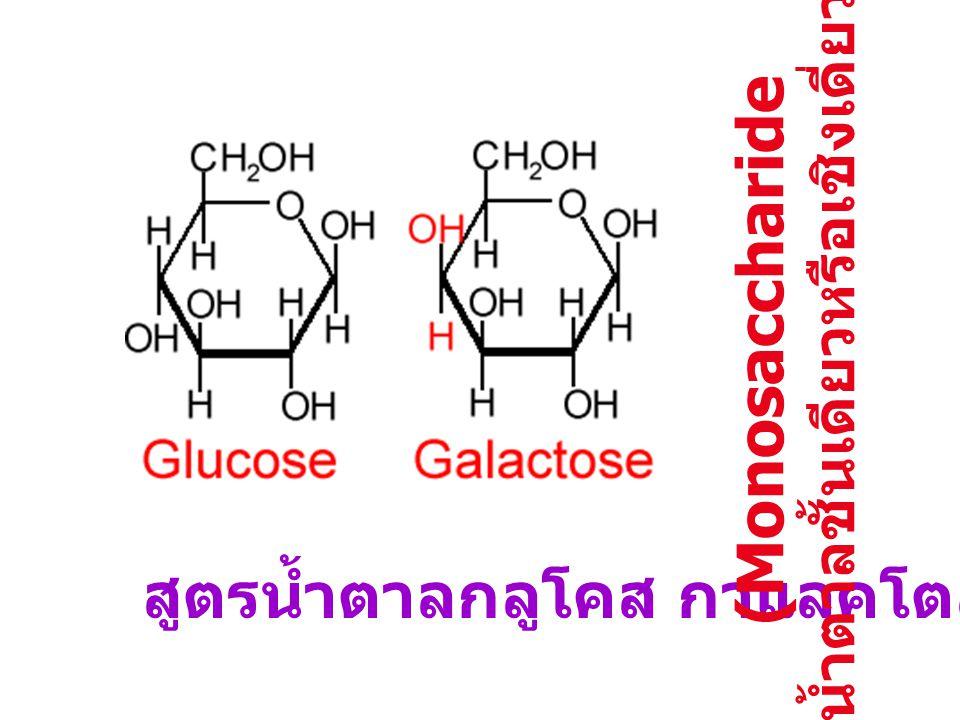 สูตรน้ำตาลกลูโคส กาแลคโตส. (Monosaccharide น้ำตาลชั้นเดียวหรือเชิงเดี่ยว )