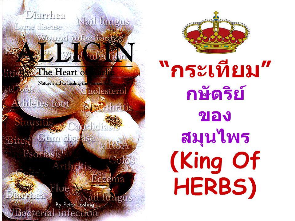 """""""กระเทียม"""" กษัตริย์ ของ สมุนไพร (King Of HERBS)"""