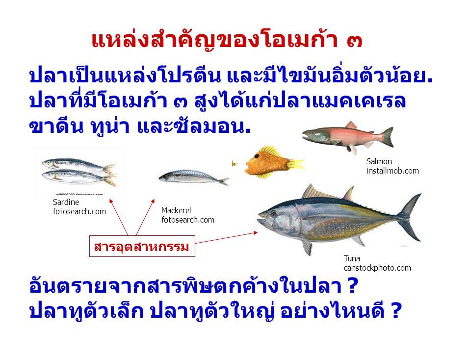 แหล่งสำคัญของโอเมก้า ๓ ปลาเป็นแหล่งโปรตีน และมีไขมันอิ่มตัวน้อย. ปลาที่มีโอเมก้า ๓ สูงได้แก่ปลาแมคเคเรล ฃาดีน ทูน่า และซัลมอน. อันตรายจากสารพิษตกค้างใ