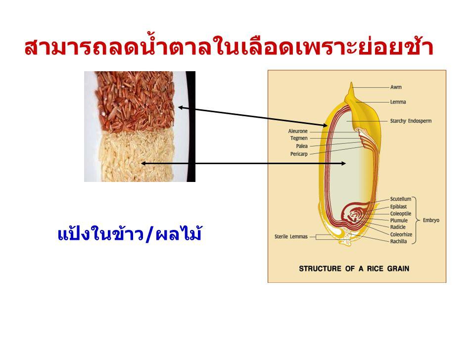สามารถลดน้ำตาลในเลือดเพราะย่อยช้า แป้งในข้าว/ผลไม้