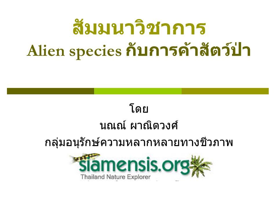 Alien species = สิ่งมีชีวิตต่างถิ่น -สิ่งมีชีวิตทุกชนิดถูกสิ่งแวดล้อมกำจัดการกระจายพันธุ์ตาม ธรรมชาติไม่ทางใดก็ทางหนึ่ง -มนุษย์เป็นสิ่งมีชีวิตเพียงไม่กี่ชนิดที่กระจายพันธุ์ไปทั่วโลก และได้ นำสิ่งมีชีวิตอื่นๆ ติดไปด้วย -สิ่งมีชีวิตที่มนุษย์นำพามา เมื่อถูกปล่อยให้อยู่ในธรรมชาติแห่งใหม่ ก็จะส่งผลกระทบต่อสมดุลที่มีอยู่เดิมของธรรมชาติในพื้นที่นั้นๆ -สามารถขยายพันธุ์ได้ด้วยตนเองในพื้นที่ใหม่จึงจะเป็น Alien โดย สมบูรณ์