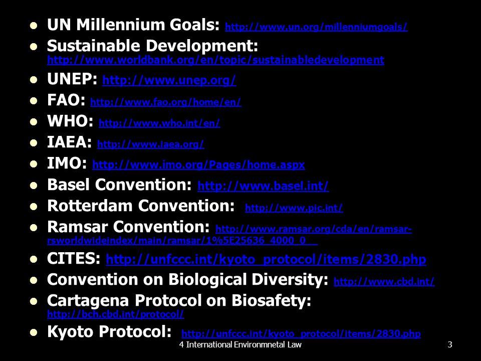 UN Millennium Goals: http://www.un.org/millenniumgoals/ http://www.un.org/millenniumgoals/ Sustainable Development: http://www.worldbank.org/en/topic/